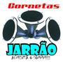 Kit 2 Corneta Jarrao Aluminio Trio P/ Driver D405 D405trio comprar usado  Monte Alegre