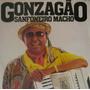 Luiz Gonzaga - Sanfoneiro Macho - Lp Vinil Rca 1981