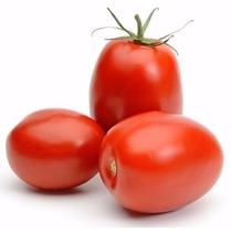 500 Sementes Do Tomate Hibrido Plutão #xexi