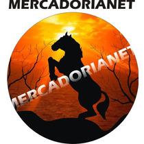 Capa Estepe Tr4, Pajero, Cavalo Por Do Sol, Cabo+cadeado