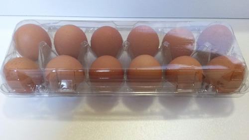 Embalagem Para 12 Ovos De Galinha 200 Unid Frete Grátis