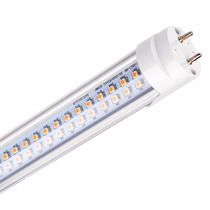 Lâmpada Led Tubo Tubular T8 60cm 9w Kit/ 10