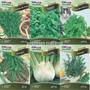 Kit 6 Tipos Sementes Tempero Ervas Funcho Cominho Estragão