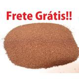 Cistos (ovos) Artêmia Salina Alto Padrão 30g + Frete Grátis