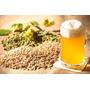 Equipamentos Para Produção Cerveja Artesanal