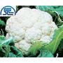 Sementes De Couve-flor Piracicaba 5g Topseed