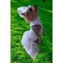 Moda Pet Vestido Noiva Cães Cachorro Cão Roupas Dama