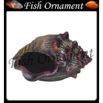 Enfeite Aquario Trema Caracol Decorado Fish Ornament