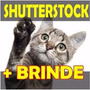Banco De Imagens Shutterstock- 50.00 Vetores Via Download