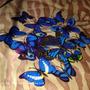 Papel De Parede Adesivo Borboletas Azul 3d Decoração