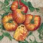 Tomate Gigante Big Rainbow Sementes Crioulas Para Mudas