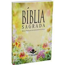 40 Bíblias Sagrada Ntlh Evangelismo Média Linguagem De Hoje