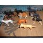 Lindas Miniaturas De Cães De Raça 10 Raças