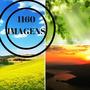 Banco De Imagens Ecologia Natureza Meio Ambiente