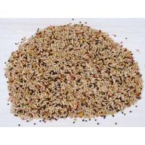Mistura Sementes Ração Para Canário Belga 10kg