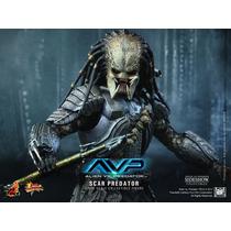 Hot Toys Alien Vs Predator Scar Predador Scar