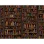 Lote Com 100 Livros Diversos Sebo Biblioteca Frete Barato