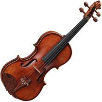 Violino 4/4 Profissional Tagima T2500 C/ Case = Eagle Vk 644