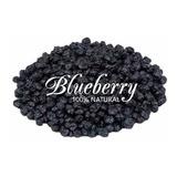 Blueberry / Mirtilo  Importado Usa -  1kg + Nf + Brinde