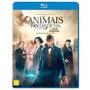 Blu-ray Animais Fantásticos E Onde Habitam