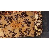 Besouros Do Amendoim (1000 Unidades)