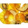 Curso Processamento Frutas Desidratadas, Secas & Cristalizad