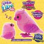 Live Pets Corujinhas - Rosa Dtc Compre-agora