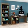 Conjunto Home Office Com Escrivaninha Multifuncional E Jcwt
