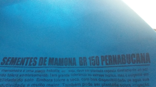 Sementes De Mamona Br 150 Pernabucana