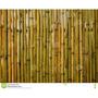 30 Lindas Peças De Bambu Amarelo P/ Artesanato Ou Decoração Original