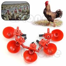 Lote De 15bebedouros Automáticos Para Todos Os Tipos De Aves