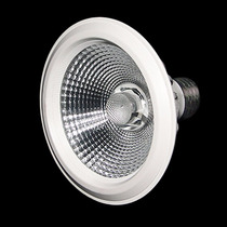 Lampada Led Par 30 Cob 10w Branco Frio/ Branco Quente