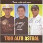 Trio Alto Astral Troca O Odio Pelo Amor Cd