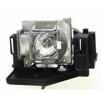 Vivitek Projector Lâmpadas D825es