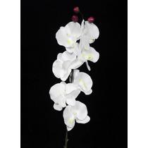 25 Orquideas Artificiais Brancas- Atacado Artificial Arranjo