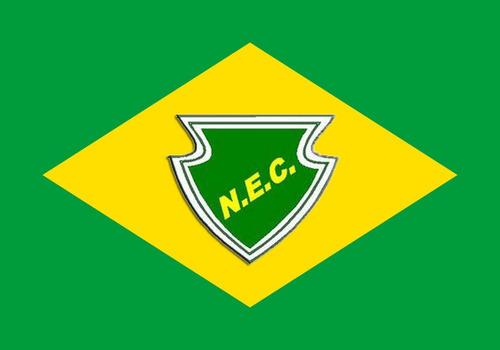 c0595f2cd5093 Bandeira Do Náuas Cruzeiro Do Sul Acre + Bandeira Do Brasil. R  120