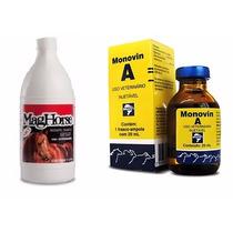 Kit Shampoo Para Cavalos Mag Horse 1l + Monovin A 20ml
