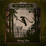 Cd The Vision Bleak Witching Hour [eua] Novo Lacrado