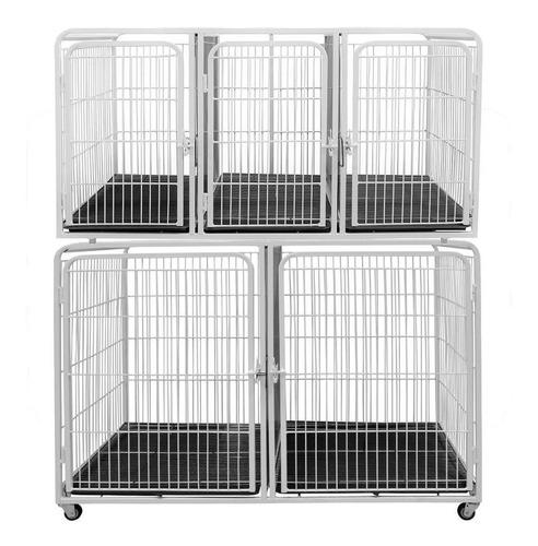 Canil Gatil Gaiola 5 Lugares Modular P/ Veterinária Pet Shop