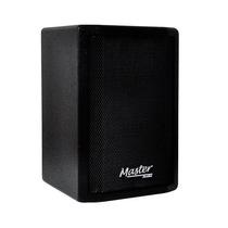Ritmus : Master Audio Tp-100 Caixa Acustica 100w Falante 10