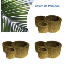 Kit 9 Vasos Xaxim De Palmeira P/ Orquídeas E Samambaias