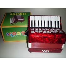 Acordeon Sanfona Gaita Infantil 8 Baixos 22 Teclas Musica