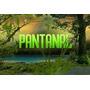 Novela Pantanal Completa Em 23 Dvds