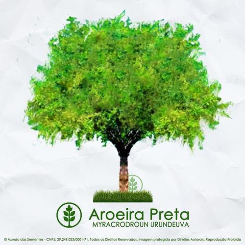 100 Sementes De Aroeira Preta Myracrodruon Urundeuva