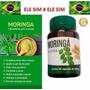 Moringa Oleifera Em Capsulas- 60 Capsulas- Espetacular