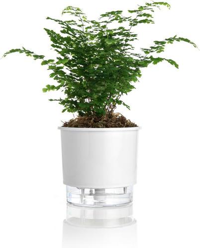 Vaso P/ Plantas Autoirrigável Jardim Tamanho Pequeno 12x11