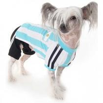 Camisa Uniforme Seleção Argentina Cachorro Pequeno Tam M