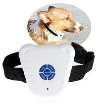 Coleira Inibidora De Latidos Para Cães Adestramento