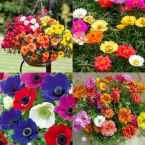 fa31cb6281 Busca vasos para flores com os melhores preços do Brasil ...
