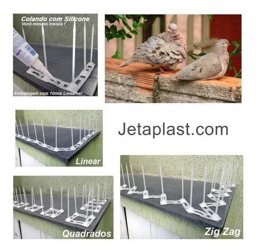 Espiculas Anti Pombos Em Plástico Kit 20 Mts Lineares